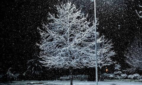 Κακοκαιρία: Πυκνή χιονόπτωση στο νομό Λάρισας - Σε ετοιμότητα μηχανήματα της Περιφέρειας Θεσσαλίας