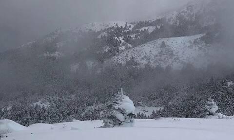 Καιρός: Στα «λευκά» πολλές περιοχές της Ελλάδας - Πού θα χιονίσει σήμερα (pics&vids)