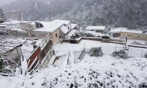 Καιρός - Χειμώνας στην καρδιά της Άνοιξης: Πού θα χτυπήσει η κακοκαιρία τις επόμενες ώρες (ΧΑΡΤΕΣ)