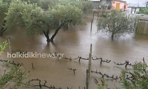 Καιρός: «Πνίγηκαν» Χαλκιδική και Τρίκαλα - Εγκλωβίστηκαν δύο γυναίκες στη Θεσσαλονίκη