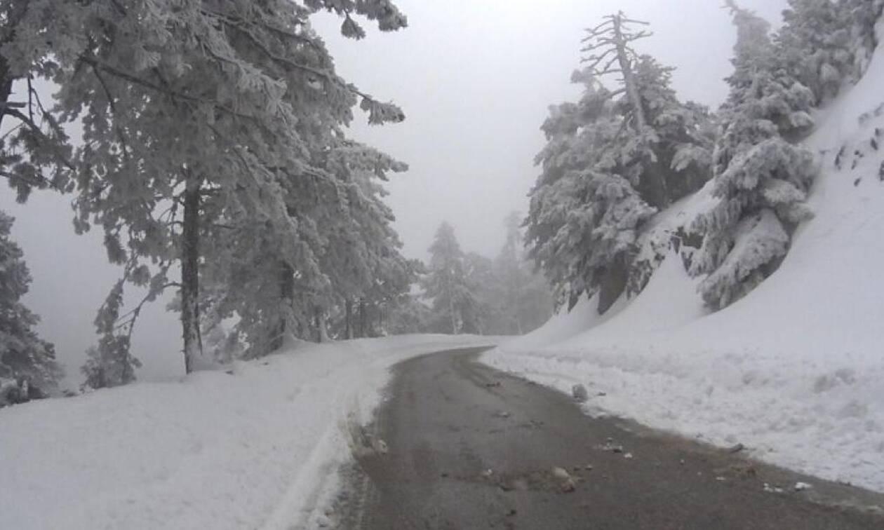 Καιρός: Χειμώνας ξανά... Χιόνισε στην Πάρνηθα. Δείτε εικόνες από το καταφύγιο Μπάφι (vid)