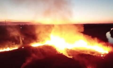 Ουκρανία - Τσερνόμπιλ: Τριπλασιάστηκε σε έκταση η φωτιά - Συνελήφθη 27χρονος (vid)