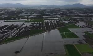 Ο πλημμυρισμένος κάμπος της Κωπαΐδας από ψηλά