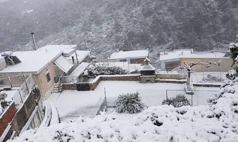 Καιρός: Στο μέγιστο 15ετίας η χιονοκάλυψη τον Απρίλιο στην Ελλάδα