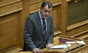 Παναγιωτόπουλος: Τι απάντησε για την εμπλοκή του Στρατού στην τήρηση των μέτρων