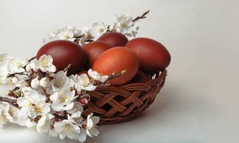 Ήθελαν να τσουγκρίσουν αυγά λόγω Πάσχα αλλά ήταν αποκλεισμένοι - Δείτε πώς τα κατάφεραν (vid)