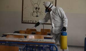 Κορονοϊός: Να μην ανοίξουν τα Δημοτικά Σχολεία εισηγούνται αρκετοί επιστήμονες