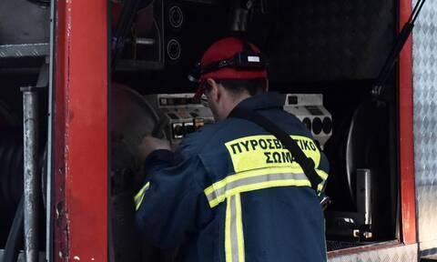 Φωτιά ΤΩΡΑ: Συναγερμός στην Πυροσβεστική για δασική πυρκαγιά στο Πέραμα Ροδόπης