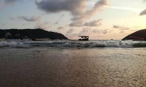 Γέμισε με νεκρά ψάρια η παραλία - Ανατριχιαστικές εικόνες