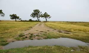 Καιρός: Με βροχή και υψηλές θερμοκρασίες η Πέμπτη - Η πρόγνωση για την Πρωτομαγιά (pics)