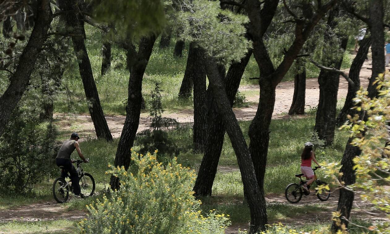 Κορονοϊός- Άρση περιοριστικών μέτρων: Τα πάρκα και τα άλση που ανοίγουν στην Αττική