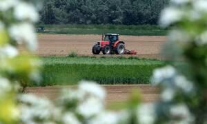Πρόταση για ενίσχυση έως 5.000 ευρώ ανά αγρότη και 50.000 ανά επιχείρηση από τον Επίτροπο Γεωργίας