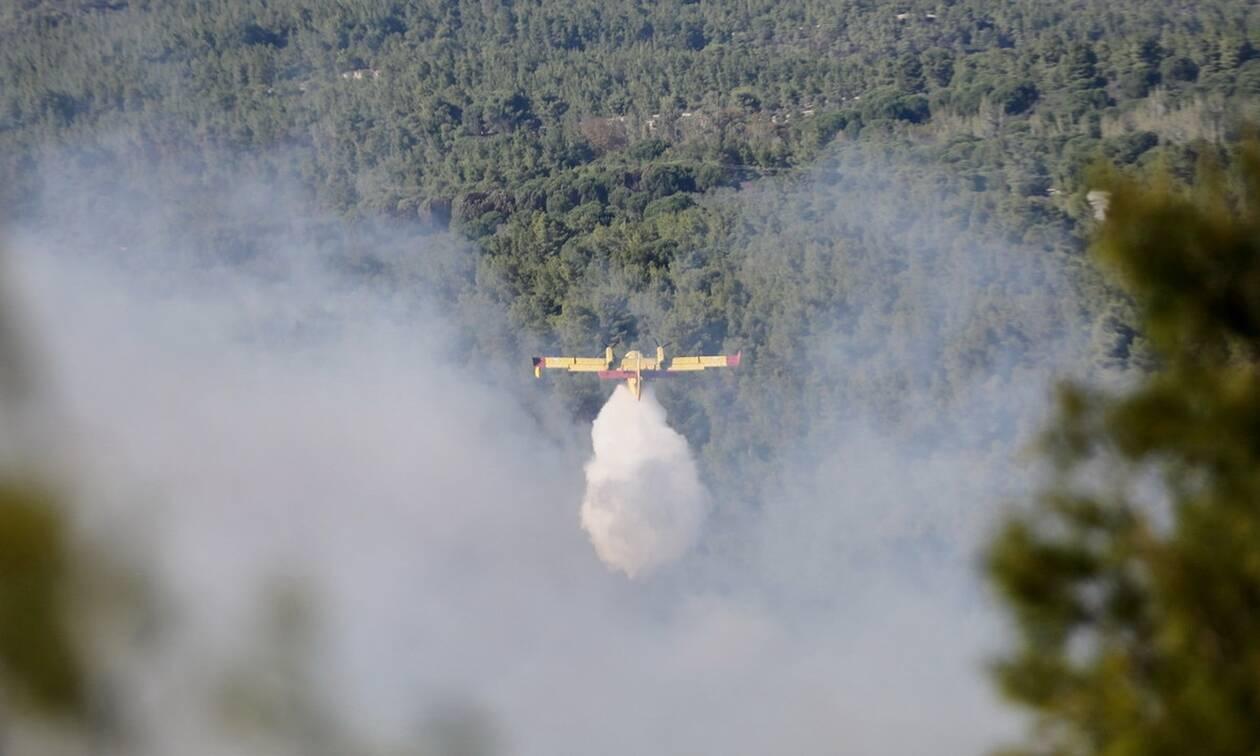 Φωτιές στην Ελλάδα: Έναρξη της αντιπυρικής περιόδου για το 2020
