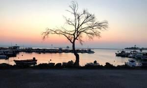 Μια εξωτική παραλία κρυμμένη στην Εύβοια