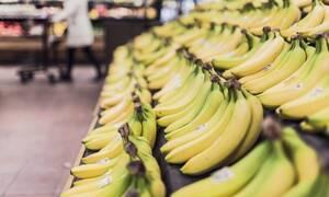 Αγόρασαν μπανάνες και βρήκαν μέσα αυτό - Είναι ζωντανοί από θαύμα!