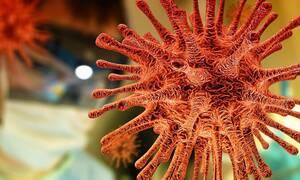 Κορονοϊός: Σε αυτό το ελπιδοφόρο εμβόλιο αναφέρθηκε ο Τσιόδρας - Πώς «σκοτώνει» τον ιό