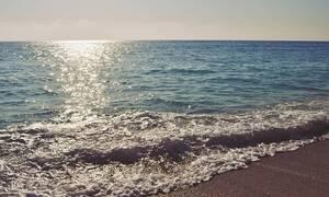 Φρίκη σε ελληνική παραλία: Απίστευτο θέαμα - Δείτε τι ξέβρασε η θάλασσα