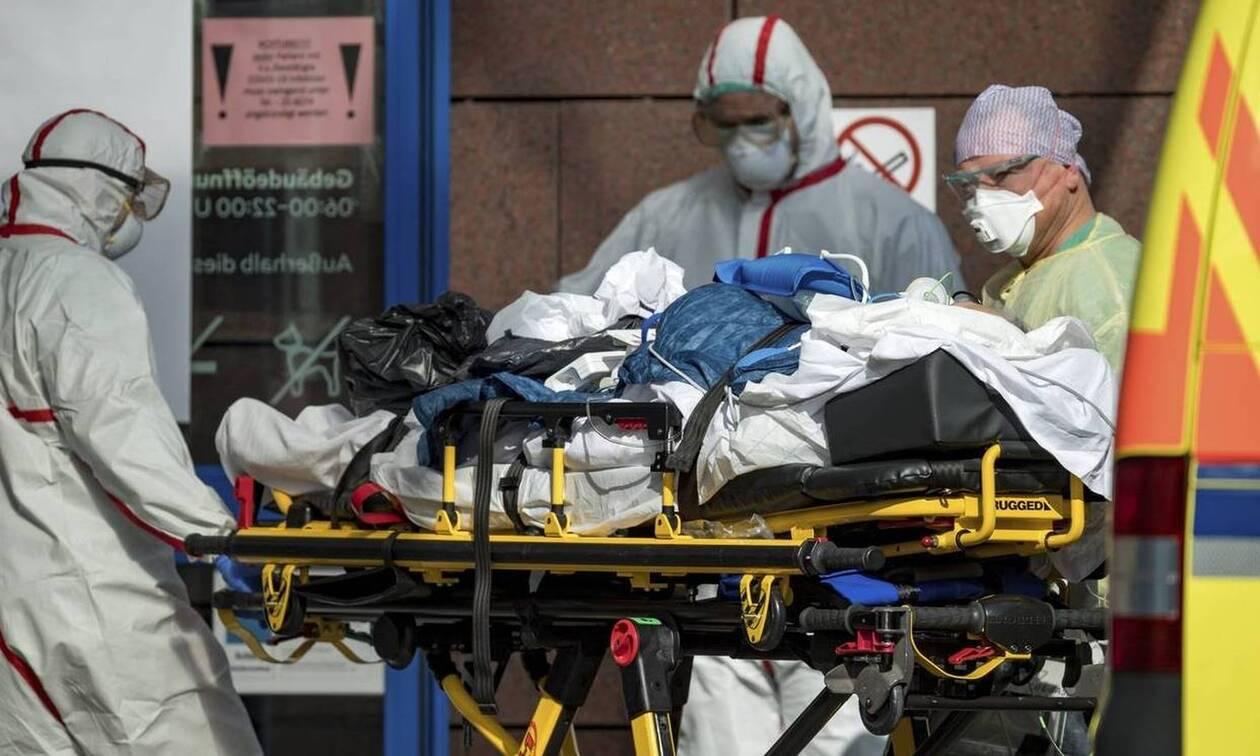 Κορονοϊός: Ανατροπή - Από αυτό το ζώο ξεκίνησε πιθανότατα ο ιός