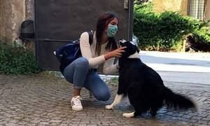 Ραγίζει καρδιές: Η στιγμή που σκύλος συναντά την αφεντικίνα του μετά την καραντίνα (pics)