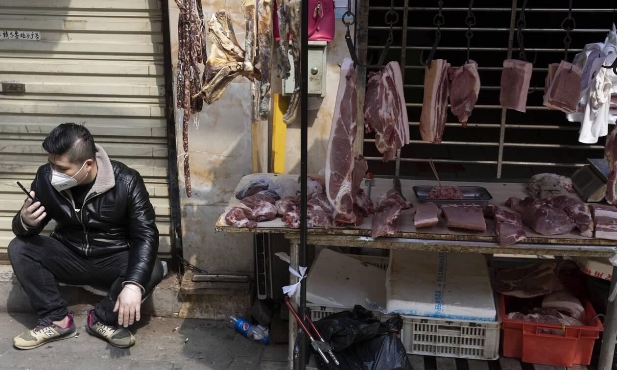 «Βόμβα» ΠΟΥ για τον κορονοϊό και την παράνομη αγορά ζώων