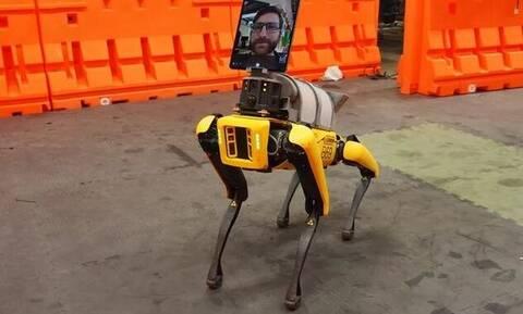 Κορονοϊός: Ρομπότ κάνει... περιπολίες για την τήρηση των κοινωνικών αποστάσεων