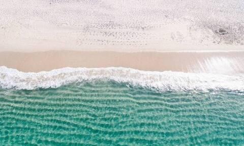 Τρόμος: Απόκοσμο πλάσμα ξεβράστηκε σε παραλία (photos)