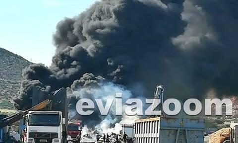 Συναγερμός στην Εύβοια: Μεγάλη φωτιά σε εργοστάσιο στην Αυλίδα (Pic&vid)
