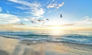 «Πάγωσαν» με αυτό που είδαν στη θάλασσα - Εικόνες από ταινία επιστημονικής φαντασίας