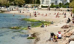 Επιβεβαίωση Newsbomb.gr: Ανοίγουν οι οργανωμένες παραλίες το Σάββατο - Όλο το σχέδιο