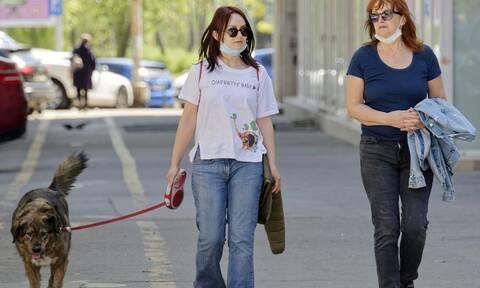 Κορονοϊός: Μπορούν τα σκυλιά να ανιχνεύσουν τον φονικό ιό;