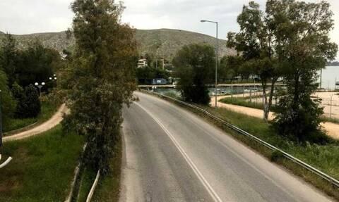 Δες τι τρομακτικό είδαν να σέρνεται στη πόλη της Χαλκίδας