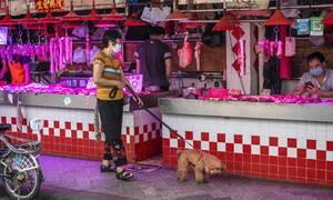 Κίνα: Η Ουχάν απαγορεύει την κατανάλωση άγριων ζώων για πέντε χρόνια