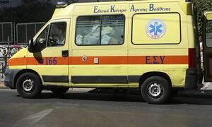 Πανικός στην Λάρισα: Τον δάγκωσε οχιά - Δείτε πώς κατάφερε να σωθεί