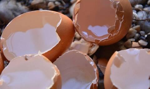 Έβαλε τσόφλια αυγού στο κομμένο χέρι - Δείτε γιατί και θα το κάνετε κι εσείς (vid)