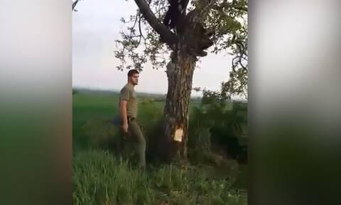 Ανέβηκε σε δέντρο για να κάνει τον... Ταρζάν! Η προσγείωσή του ήταν ανώμαλη (video)