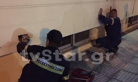 Λαμία: Γατάκια εγκλωβισμένα σε τοίχο έσωσε η Πυροσβεστική - Τι κρύβεται πίσω από αυτή την ιστορία