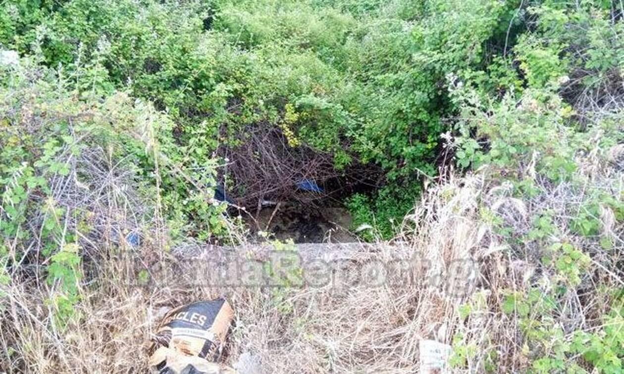 Λαμία: Βρήκαν σακούλα πεταμένη - Ανατρίχιασαν όταν είδαν τι είχε μέσα (pics)