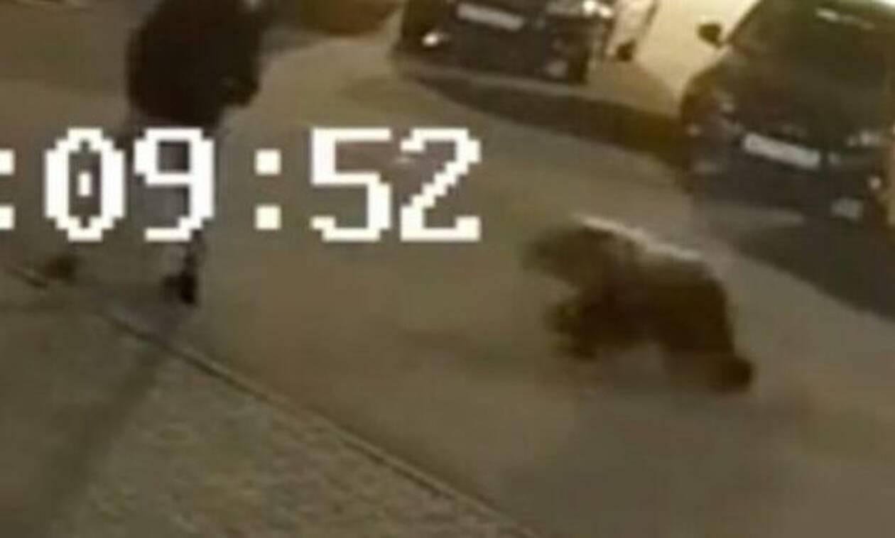 Κάμερα ασφαλείας: Αρκούδα εμφανίζεται από το πουθενά και σκορπά πανικό! (video)
