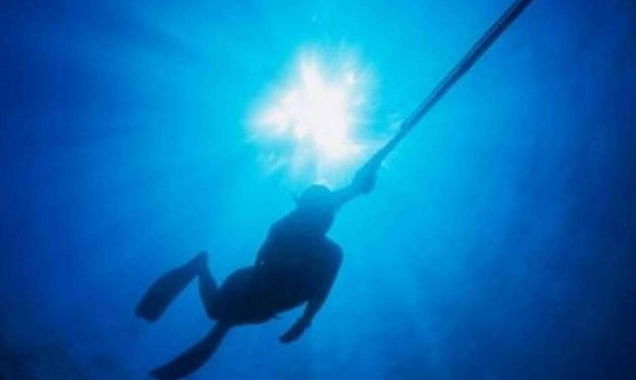 Τρόμος για 18χρονο ψαροντουφεκά! Καρέ - καρέ η «συνάντηση» του με καρχαρία (pics)