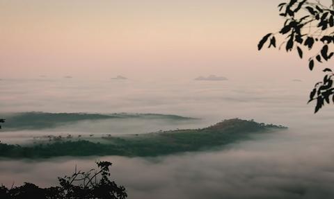 Το απάτητο δάσος που πήγε να εξερευνήσει το National Geographic (video)