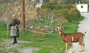 Η φωτογραφία με τη γιαγιά από την Κρήτη που θα σε... προβληματίσει!