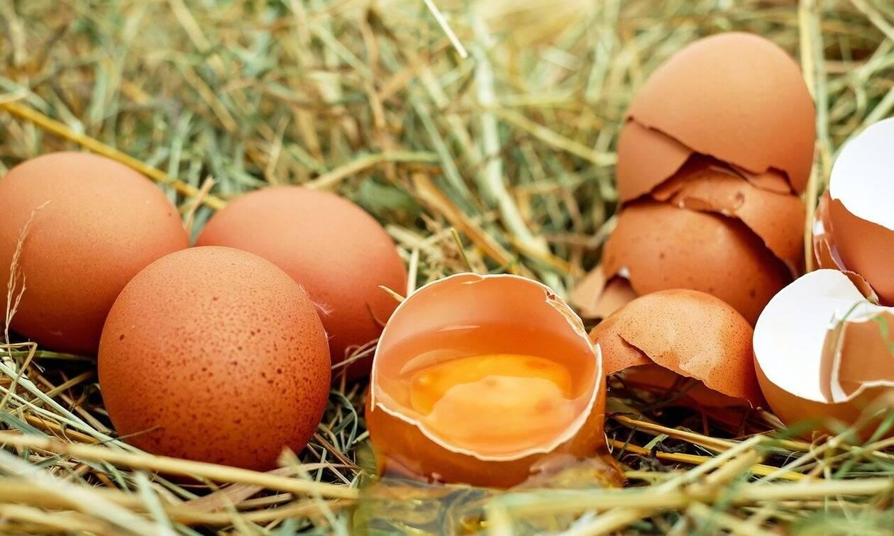 Μικρές κηλίδες στα αυγά - Δεν φαντάζεστε τι είναι (pics)