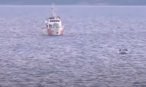 Ντοκουμέντο: Τουρκικές ακταιωροί σπρώχνουν στο Αιγαίο λέμβους με μετανάστες
