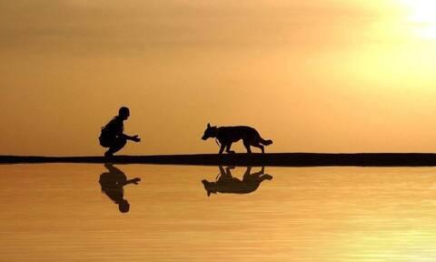 Είδε τον σκύλο να βγαίνει από τη λίμνη με... λεία στο στόμα - Δεν πίστευαν αυτό που κρατούσε (vid)