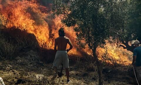 Φωτιά ΤΩΡΑ στο Ρέθυμνο εν μέσω θυελλωδών ανέμων