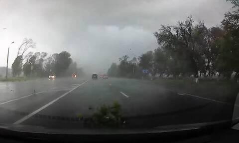 Τρομερές εικόνες - Τυφώνας ξεριζώνει δέντρα σε λεωφόρο (vid)