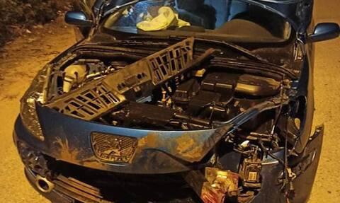 Λαμία: Τράκαρε με αγριογούρουνο και το αμάξι έγινε «κομμάτια»