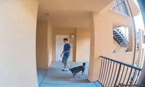 Αυτός είναι ο πιο χαζός γείτονας στην ιστορία - Δείτε τι έκανε (vid)