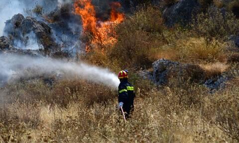 Φωτιά ΤΩΡΑ στον Ασπρόπυργο – Κοντά σε σπίτια οι φλόγες