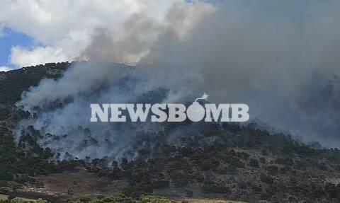 Μεγάλη φωτιά στον Ασπρόπυργο – Οι πρώτες εικόνες από το σημείο